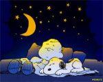 Insonnia: 7 regole per dormire di più