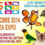 PetsFestival: Piacenza, 18-19 ottobre 2014