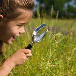 La curiosità? Un ottimo modo di vivere! Ecco il perché…