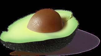 avocado-161822__180