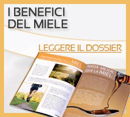 dossier_mel_it
