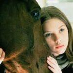 Come diventare amici di un cavallo