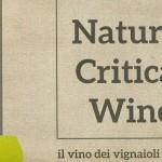 La Fiera Nazionale del Vino Naturale – Natural Critical Wine