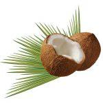 6 metodi per liberarsi della cellulite con l' olio di cocco