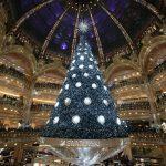 Gli alberi di Natale… in giro per il mondo!