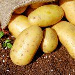 Patate: proprietà, benefici e alcune curiosità