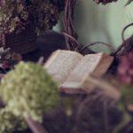 Biblioterapia: leggere è sinonimo di benessere!