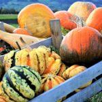 Il detox in autunno: disintossichiamoci senza sforzo!