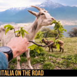 Italiani in vacanza: l'83% resterà in Italia, i 6 itinerari on the road di automobile.it